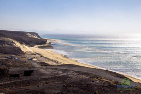 beach landscape of fuerteventura