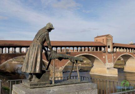 Paonorama di Pavia