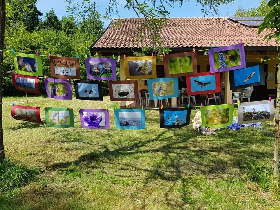 Mostra fotografica oasi di Tolcinasco